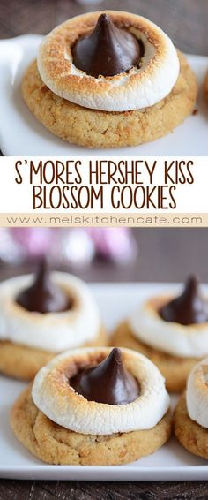 All the joy of a classic s'mores wrapped up in a delightful little cookie!