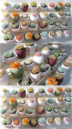 Cute heart reusable silicone mArts And Crafts ClipartI love these pebble flower pots. With the silicone mold I can make my own flower pot collection. Succulent Arrangements, Cacti And Succulents, Planting Succulents, Cactus Plants, Garden Plants, Indoor Plants, Planting Flowers, Succulent Gardening, Succulent Terrarium