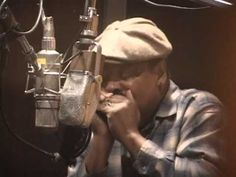Tidewater Virginia blues musicians - guitarist John Cephas and harmonica player Phil Wiggins - play a version of Richmond Blues (circa Video is courte. Jazz Blues, Blues Music, October 2014, Harp, Musicians, Virginia, Southern, Entertainment, Artists