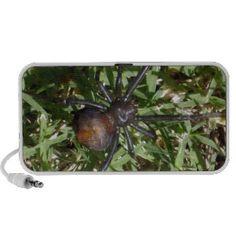 Aussie_Redback_Spider,_ Travel Speakers