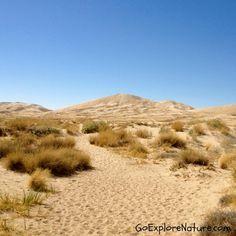 Saturday Snapshot: Sand Dunes