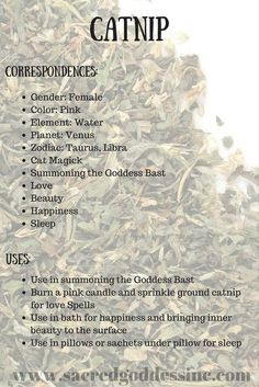 The Magick of Herbs: Catnip (Printable for Your BOS) – Witches Of The Craft® – herbal craft – Home Recipe Magic Herbs, Herbal Magic, Healing Herbs, Medicinal Herbs, Healing Spells, Herbal Plants, Healing Stones, Witch Herbs, Herbal Witch