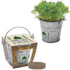 "Give your clients the gift of a green thumb with our Mini Pail Blossom Kit! The 2 1/2"" x 2 1/8"" x 2 1/2"" silver metal pail includes 1 seed packet (specify on order), 1 peat pellet and 4 color process packaging with imprint on top. Add your company's or organization's logo for brand exposure."