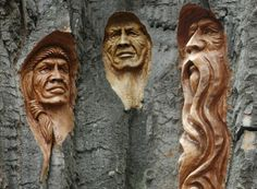 Old Dead Trees Carving Artwork