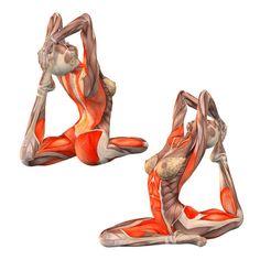 One-legged king pigeon pose: left foot grab - Eka Pada Rajakapotasana left - Yoga Poses   YOGA.com