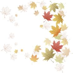 autumn 1 (8).png ❤ liked on Polyvore featuring autumn, fall, backgrounds, filler, flowers, borders, detail, embellishment and picture frame