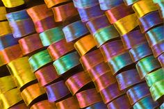 Iridescent scales of a butterfly wing.