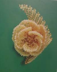 Картинки по запросу людмила божко схема розы