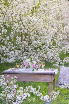 ♔  Hello Spring! A table among blooming trees.