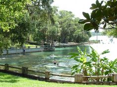 Alexander Springs Fl Best Camping In Florida Florida