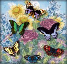 Beautiful Buterflies Cross Stitch Pattern