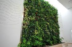 design is the concept of bringing aspects of nature into modern design. This living piece of art is very inspiring for SMEs who want to incorporate biophilic design into their offices but is perhaps not attainable.