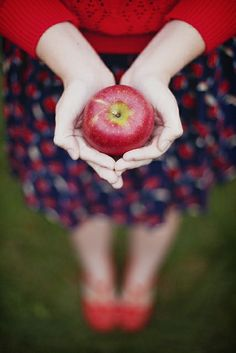An apple for your teacher♡ Apples Photography, Hand Photography, Apple Orchard Photography, Artistic Photography, Kombucha, Apple Slaw, Fall Photos, Fall Pictures, Senior Pictures