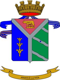 8th Paratroopers Engineers Regiment (Italy) - Wikipedia