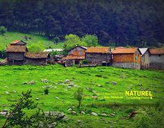 "Check out new work on my @Behance portfolio: ""Dıgıtal Photography"" http://on.be.net/1L2Z0PL"
