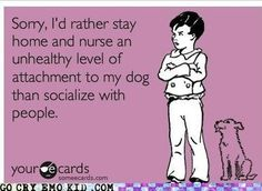 or go to the farm and nurse my unhealthy attachment to horses.....