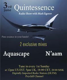 Mark Egorov - Quintessence Radio Show # 005 (Guests Aquascape & N'aam) – Mark Egorov