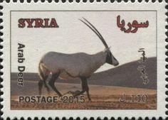 Arabian oryx (Arab Deer)