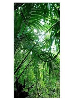 Dschungel Motivdruck
