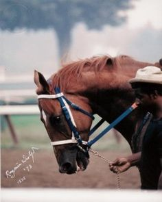 needed to be led off the track, either by Charlie Davis on Billy Silver, or Eddie,