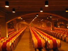 Amazing wine barrels