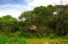 Koh Kong island resort. Cambodia. Tone Lepsøe.