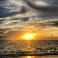 """GANKOR TOURS's Instagram profile post: """"#worldoceansday #motivationmonday #sunriseoverwater #bestdaysahead #ocean & #sun past #covid19 #therapy #gankortours #privatetours…"""" Oceans Of The World, Day Tours, Tour Guide, Monday Motivation, Location History, Ireland, Past, Profile, Sunset"""