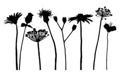 flower_silhouettes