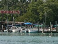 Islamorada Party Fishing, Snorkeling Trips, Ecotours & Sunset Boat Tours in the Florida Keys (FL)