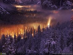 Yosemite National Park fotografia di Phil Hawkins