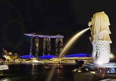 Singapura Memilihtempat-tempat yang harus dikunjungidi Singapura bukanlah tugas yang mudah; ini adalah kota yang penuh dengan atraksi yang mengesankan, aktivitas menarik dan banyak tempat untuk berjalan-jalan sendirian, dengan teman-teman atau untuk semua keluarga. Hampir semua orang akan melihat gambar simbol kota, Merlion dan ini membuat daftar kami di dekat SkyPark Marina Bay Sands dan Singapore Flyer