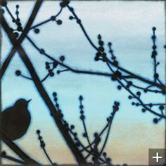 Morning Song Canvas Prints $109