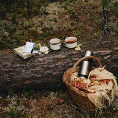 Picnic on a log