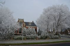 Een mooie winterse foto van Lidlumerwei 16 in Oosterbierum.