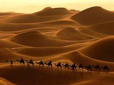 सत्य का चमत्कार हुआ रेगिस्तान में
