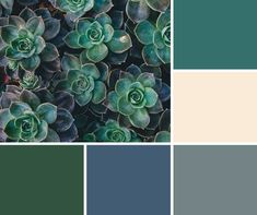 Image result for color schemes using grey, white, hunter green, green