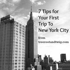 New York City in Three Days