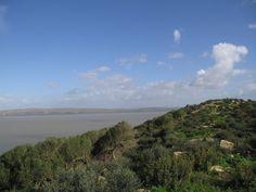 Parc national de l'Ichkeul