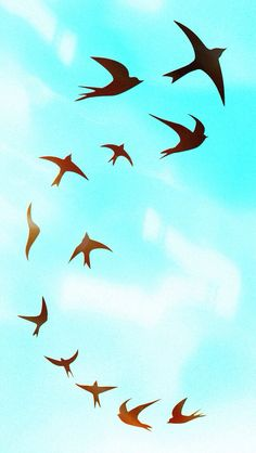 Cute birds flying phone wallpaper