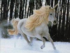 Unicorn snow