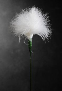 "White Marabou Feathers on 20"" Wire Stem $2.99 each/ 10 for $1.59 each Add to decorations, centerpieces and more. Made with marabou feathers. Flower is 3"" x 3"" on a 20"" wired stem."