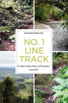 If you want a shorter hike that still packs a punch, No. 1 Line Track is for you. A short but challenging hike in the Ruahine Range, New Zealand Hiking Training, Hiking Quotes, Adventure Activities, New Zealand Travel, Best Hikes, Travel Guides, Travel Tips, Day Hike, Amazing Destinations