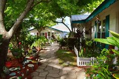 Cedar Key, Florida: A Slice of Key West, Without the Crazies and the Crowds - Beaches Bars and Bungalows Florida Hotels, Florida Vacation, Florida Travel, Florida Beaches, Florida Trips, Florida Keys, Cedar Key Florida, Old Florida, West Florida