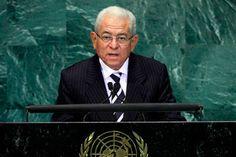 Jorge Valero criticó a la ONU por avalar a la consulta sobre la ANC