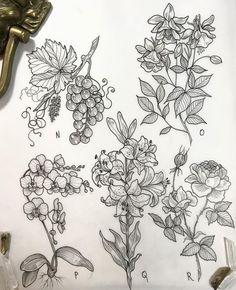 Best Geometric Tattoos And Symbolism Cute Tattoos, Flower Tattoos, Flower Tattoo Drawings, Geometric Tattoo Design, Geometric Tattoos, Plant Tattoo, Floral Drawing, Neo Traditional Tattoo, Skin Art