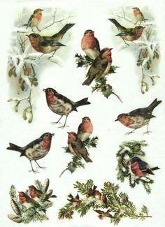 Ricepaper/ Decoupage paper, Scrapbooking Sheets /Craft Paper  Winter Birds