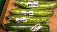 Cvičení a bez pohybu? Pickles, Cucumber, Zucchini, Vegetables, Food, Essen, Vegetable Recipes, Meals, Pickle