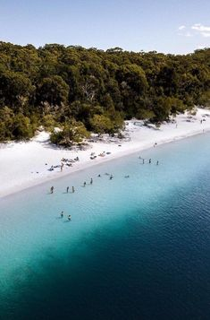 Lake McKenzie Fraser Island photo by Places To Travel, Places To See, Travel Destinations, Visit Australia, Australia Travel, Queensland Australia, Western Australia, Australian Beach, Beaches In The World