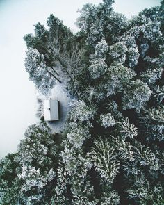 Cabin in the woods, covered in snow and complete serene.