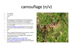 camouflage meaning #gre #cat #vocabulary